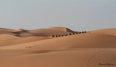 Dunas al atardecer, Marruecos