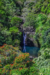 Maui_2015_106