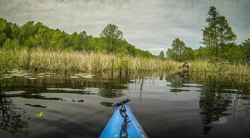 Lake Marion Plantation Islands-032