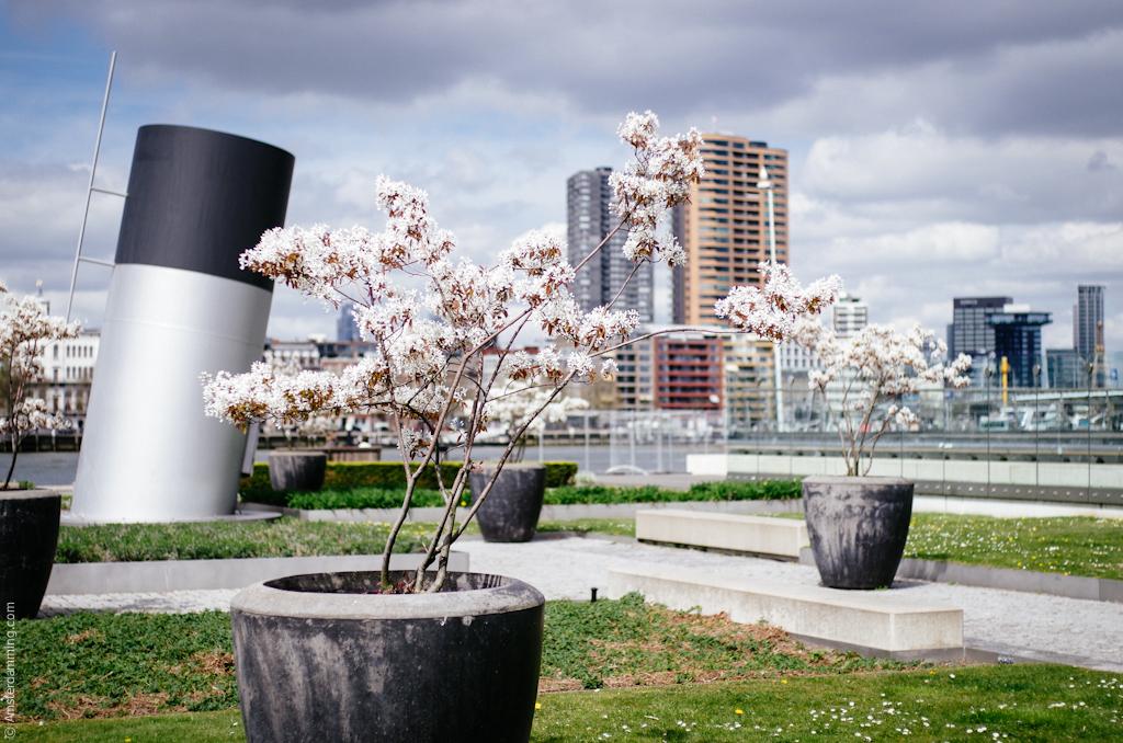 Rotterdam, The Netherlands