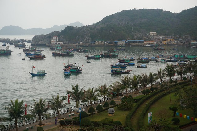 Cat Ba Harbor full of boats