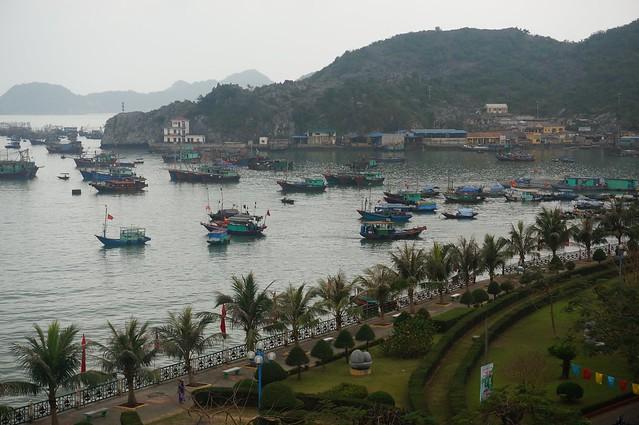 Cat Ba Harbor full of boats