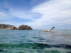 Playa de Aguablanca Ibiza