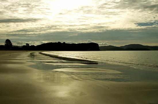 Dramatic Cooks Beach best, Coromandel Penn 22 4 15 K55149