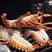 Fresh Anguilla lobsters getting grilled