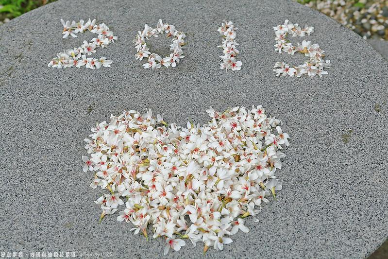 2015.04.25~汐止翠湖.內溝山油桐花步道