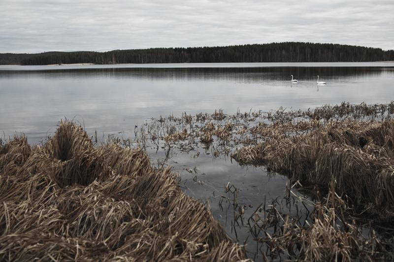 mikkoputtonen_photodiary_finland2_web