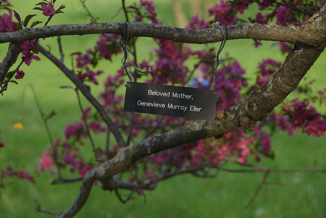 CrabApple Arboretum-14