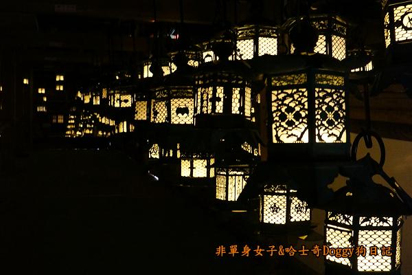 日本奈良春日大社24