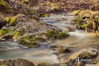 Spring Brook at Salamonie State Forest
