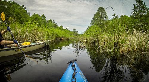us unitedstates southcarolina kayaking paddling summerton frierson