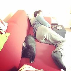 the sleeping beauties lol