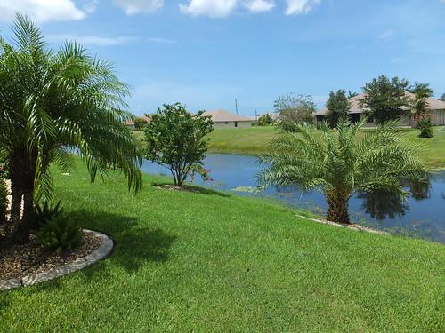 Backyard canal view