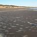 Small photo of Agitated sea