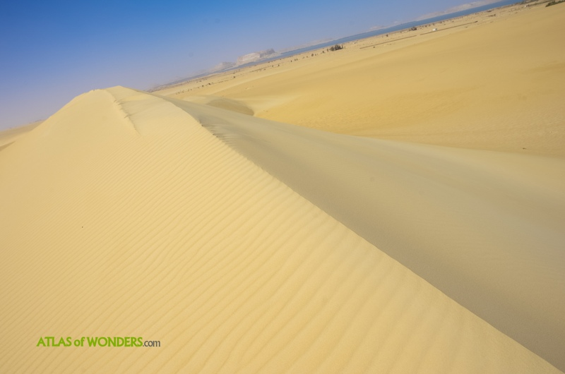 Dunes Siwa Oasis Sahara