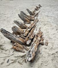 Shipwreck  Corolla Whalehead North Carolina -  Buck Island  Albacore St.  19th century American Civil War steamer  Metropolis