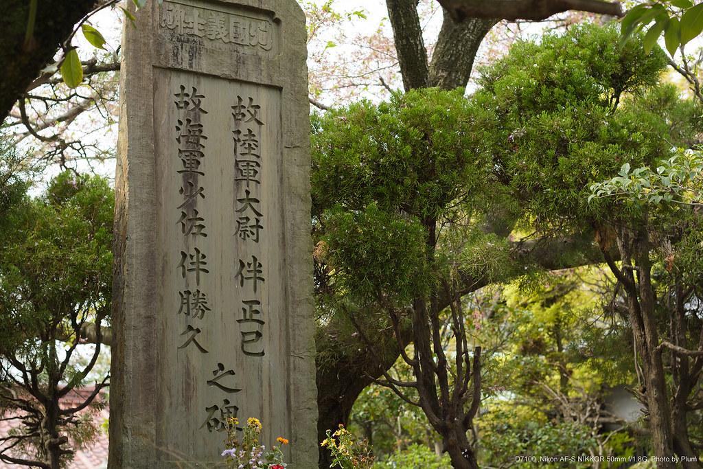 Amano_20150412-101