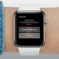 "Apple Watch: Music App (Screen Grabs from the ""Guided Tours"" on Apple.com)"