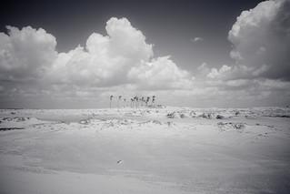 Areia, areia, areia, palmeiras e nuvens.