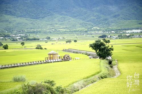 台東縣池上鄉周邊景點吃喝玩樂懶人包 (1)