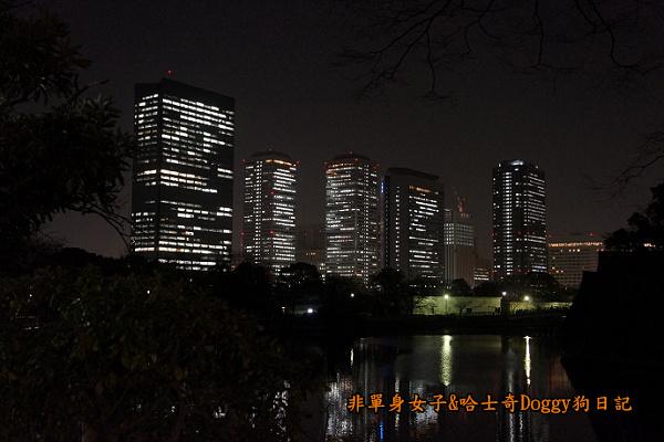 日本大阪城公園梅林城天守閣3D光之陣26