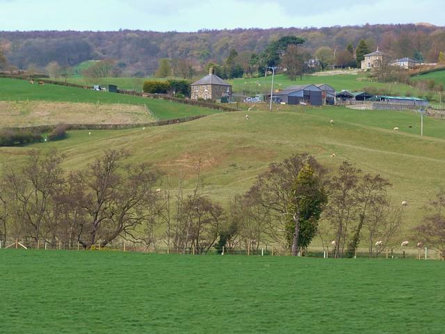 Paisaje de North York Moors (Inglaterra)