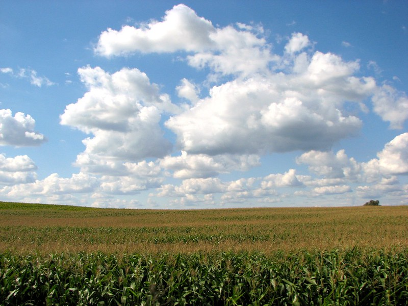 Clouds and corns