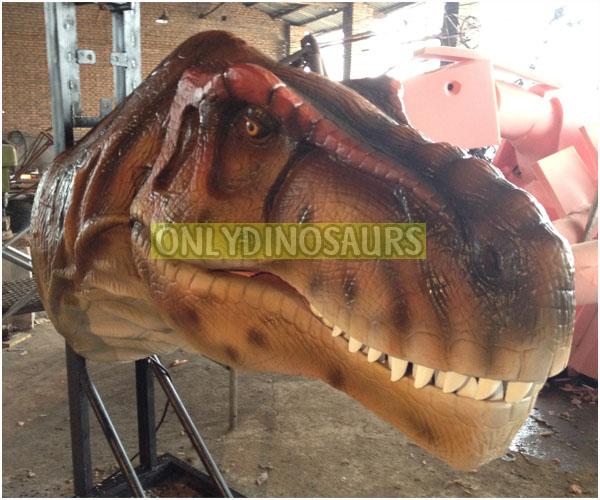 Tyrannosaurus Rex Head Model