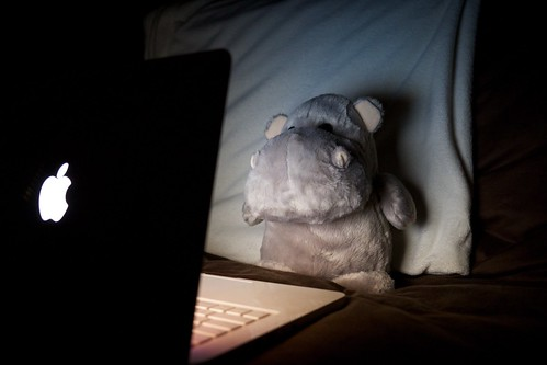 Hippo computing