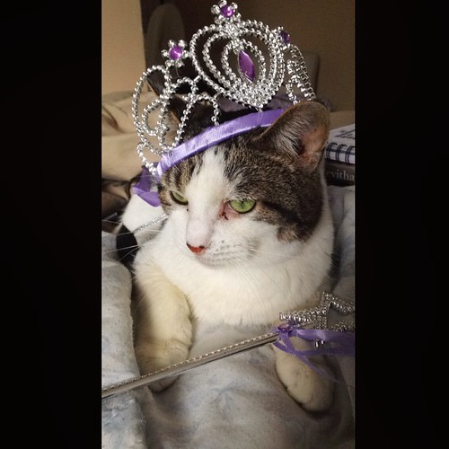 princessclem