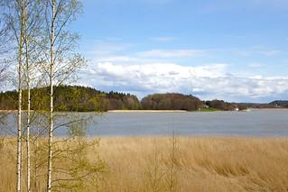 Lemunaukko, Turku, Finland