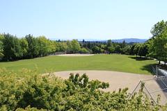 Baseball fields at Aubrey Davis Park