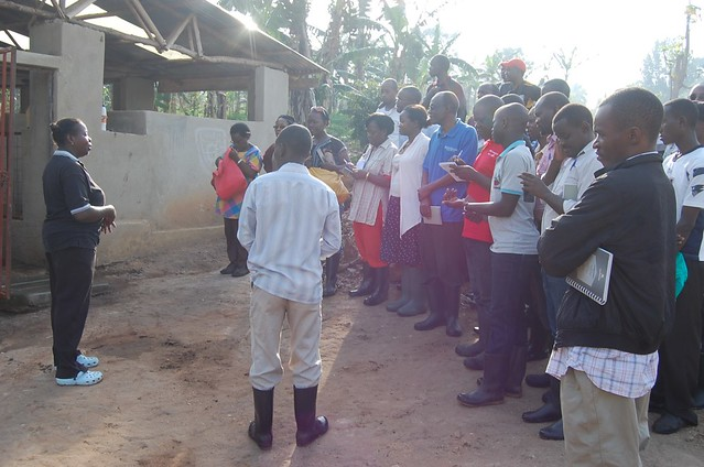 Pig farmers training in Matugga_farm visit