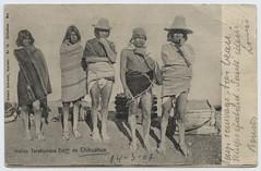 Indios Tarahumara Estado de Chihuahua.