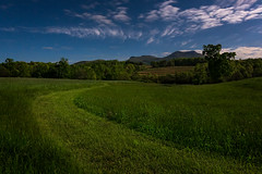 Moonlit fields...