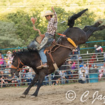 EllicottvilleRodeo-4