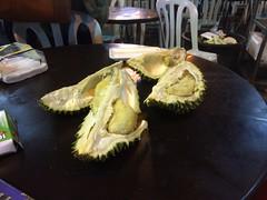 carving(0.0), coconut(0.0), plant(0.0), produce(0.0), dish(0.0), fruit(1.0), food(1.0), durian(1.0), cuisine(1.0),