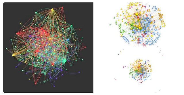 Rhizo15 Network Visualization