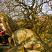 1 IMG_7329 by boulderclassics.com