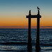 <p>Seagull patrolling the seascape at Moss Landing, CA</p>
