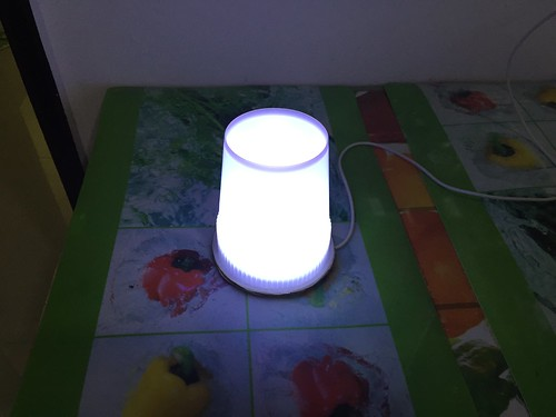 One Watt LED Night Light