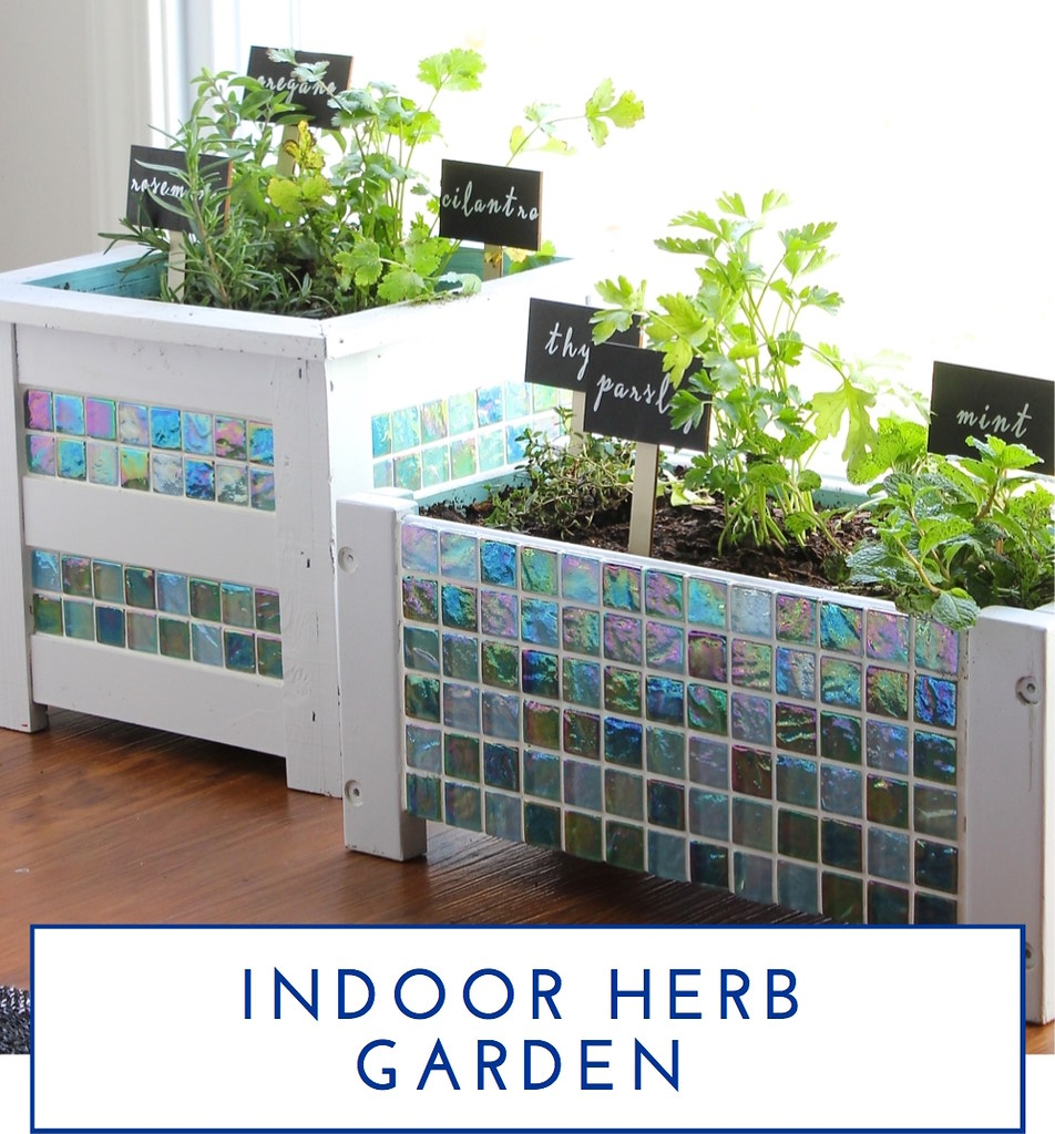 Indoor Herb Garden - The Homes I Have Made