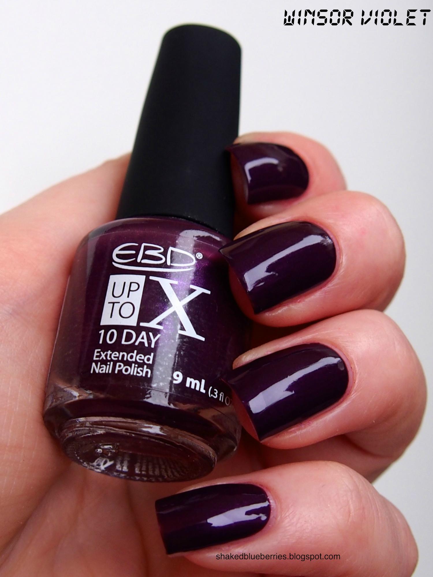 EBD_Winsor_Violet_1_1