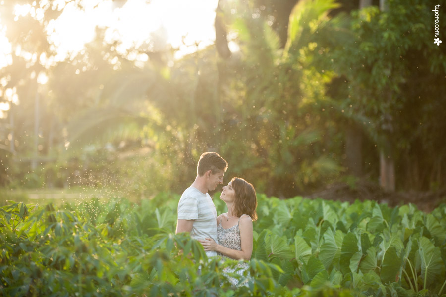 Plantation. couple, romantic photographer Rarotonga