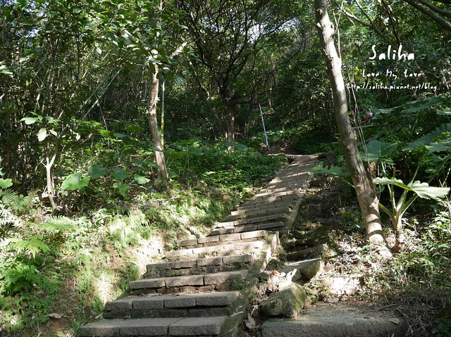 台北登山爬山象山步道 (10)