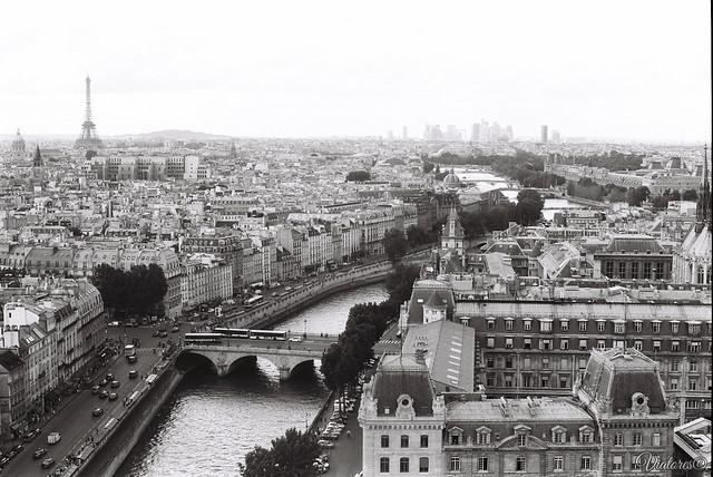 Вид с Нотр-Дам-де-Пари. Париж. Notre Dame de Paris. Paris