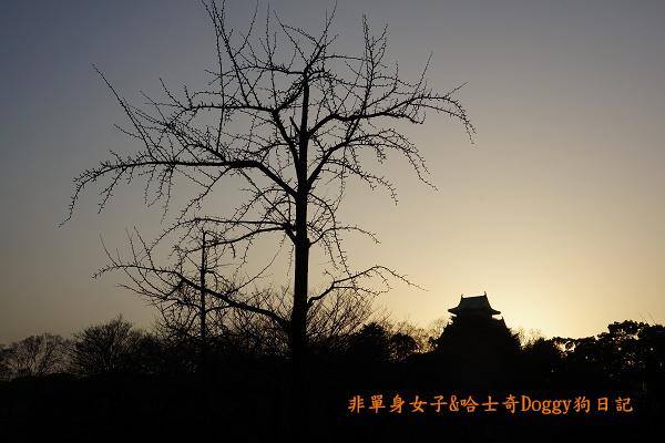 日本大阪城公園梅林城天守閣3D光之陣10
