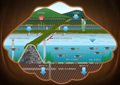 《好魚慢食-吃對海鮮愛海洋》繪本內頁2;圖片來源:海龍王愛地球協會