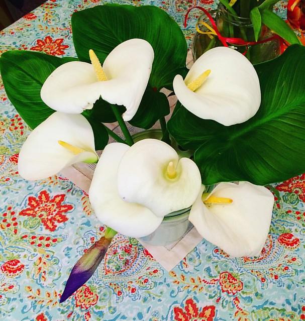I love calla lilies.