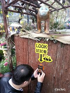 CIRCLEG 遊記 維多利亞公園 銅鑼灣 花展 2016 (16)